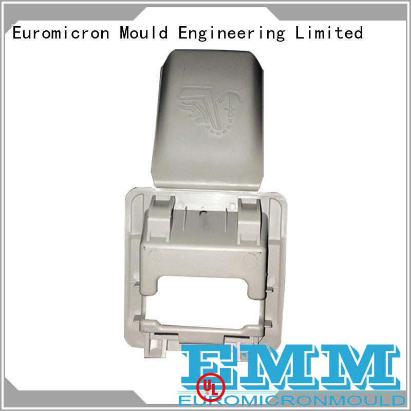 Euromicron Mould grid car door molding one-stop service supplier for businessman