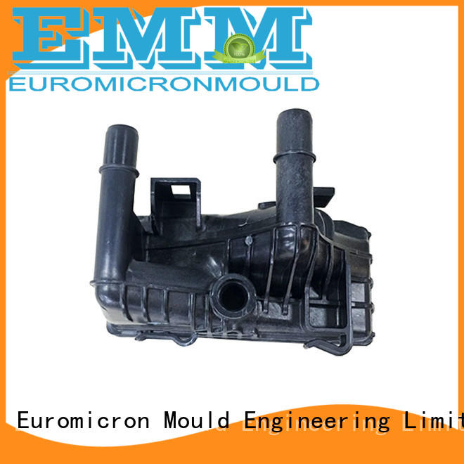 Euromicron Mould OEM ODM car door molding one-stop service supplier for trader
