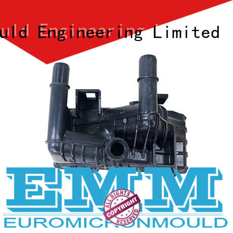 Euromicron Mould resin auto door molding one-stop service supplier for merchant