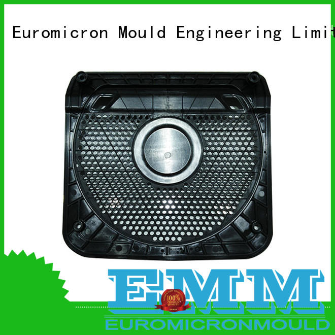 Euromicron Mould part car door molding one-stop service supplier for businessman
