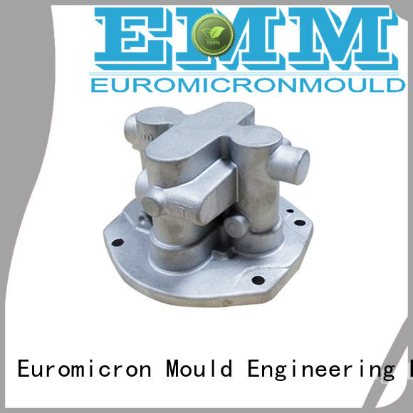 Euromicron Mould professional die casting car export worldwide for auto industry