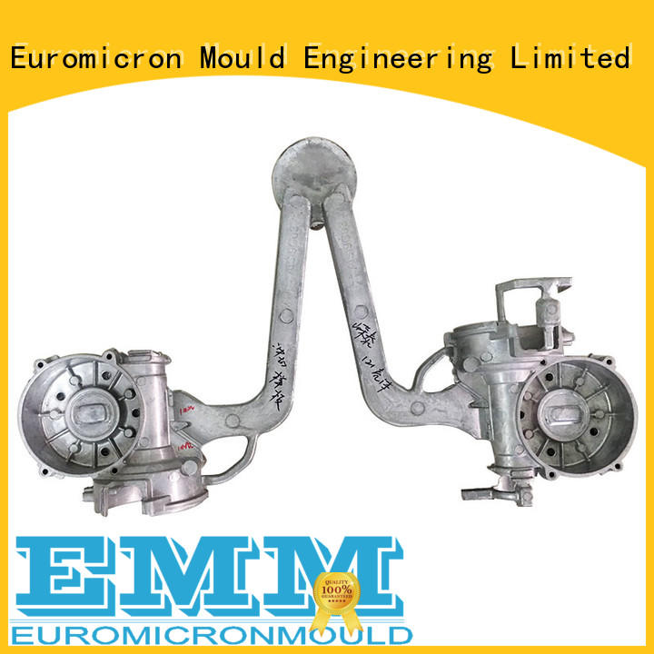 Euromicron Mould great price auto cast export worldwide for global market