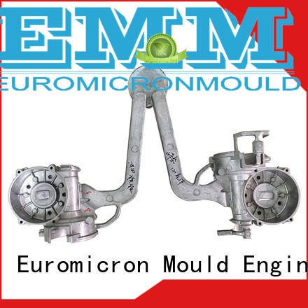 Euromicron Mould great price casting car parts export worldwide for industry