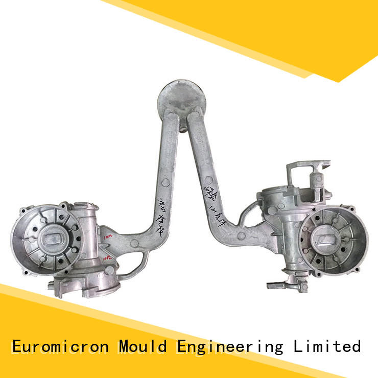 Euromicron Mould professional die cast auto export worldwide for industry
