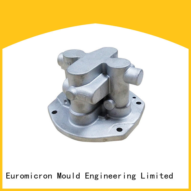 Euromicron Mould auto cast export worldwide for industry