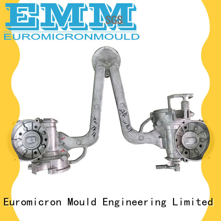 Euromicron Mould professional casting car parts export worldwide for auto industry