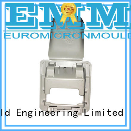 Euromicron Mould OEM ODM car moldings source now for merchant