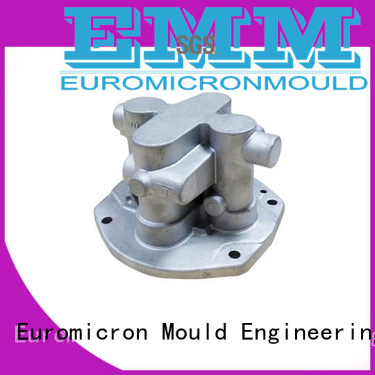 Euromicron Mould great price auto cast mold for industry