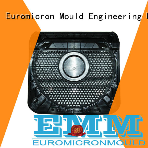 Euromicron Mould OEM ODM car door molding one-stop service supplier for merchant