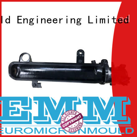Euromicron Mould injection auto door molding renovation solutions for trader