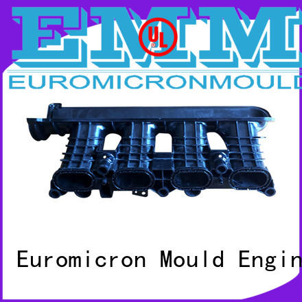 Euromicron Mould OEM ODM car moldings one-stop service supplier for trader