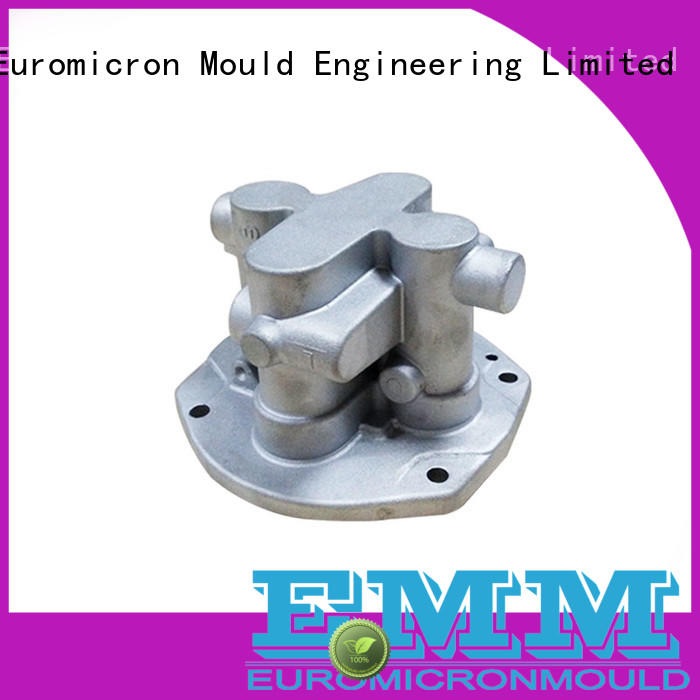 Euromicron Mould automobile casting auto innovative product for global market